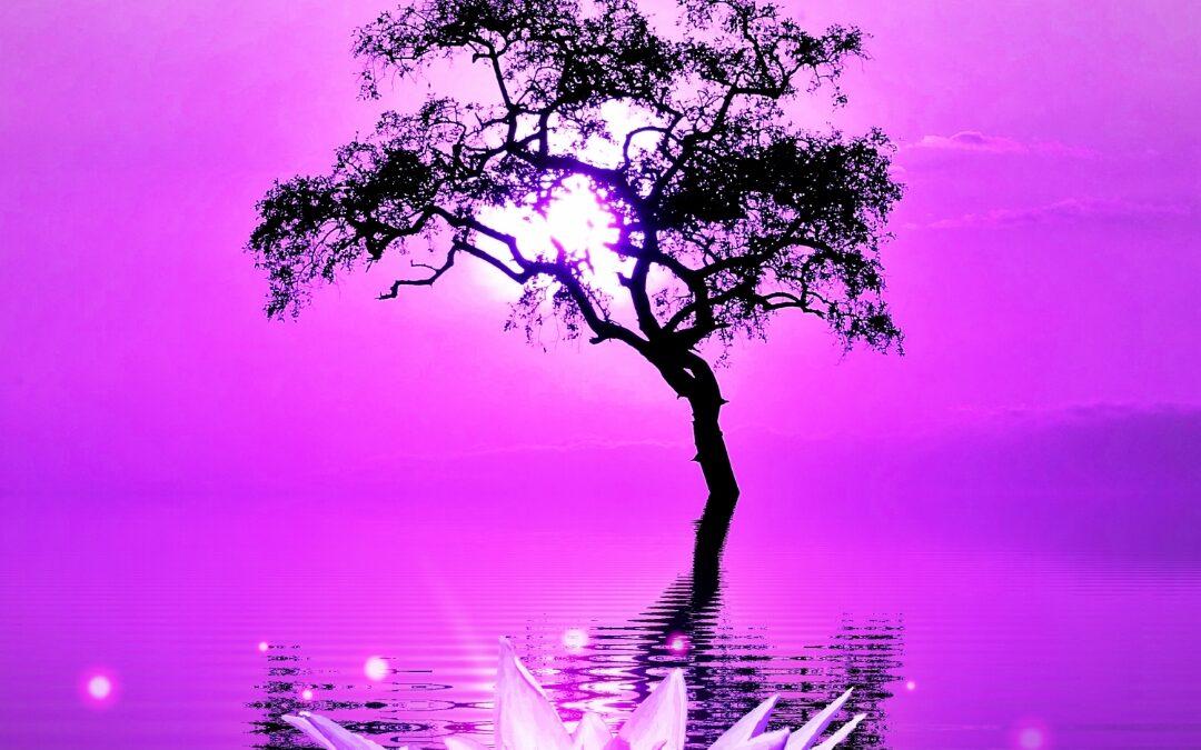 Free Meditation Sounds Mp3 Download