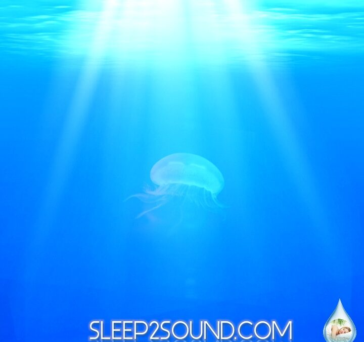 Free Nature Sounds Mp3 Download